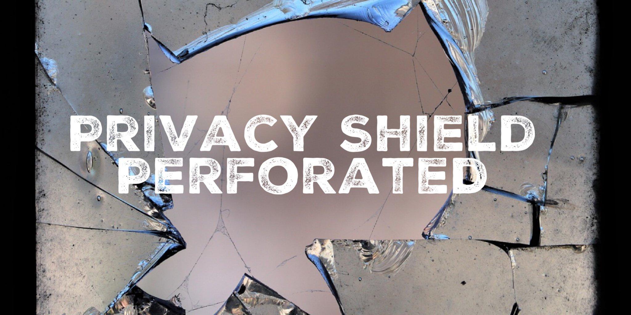 Privacy Shield typorama
