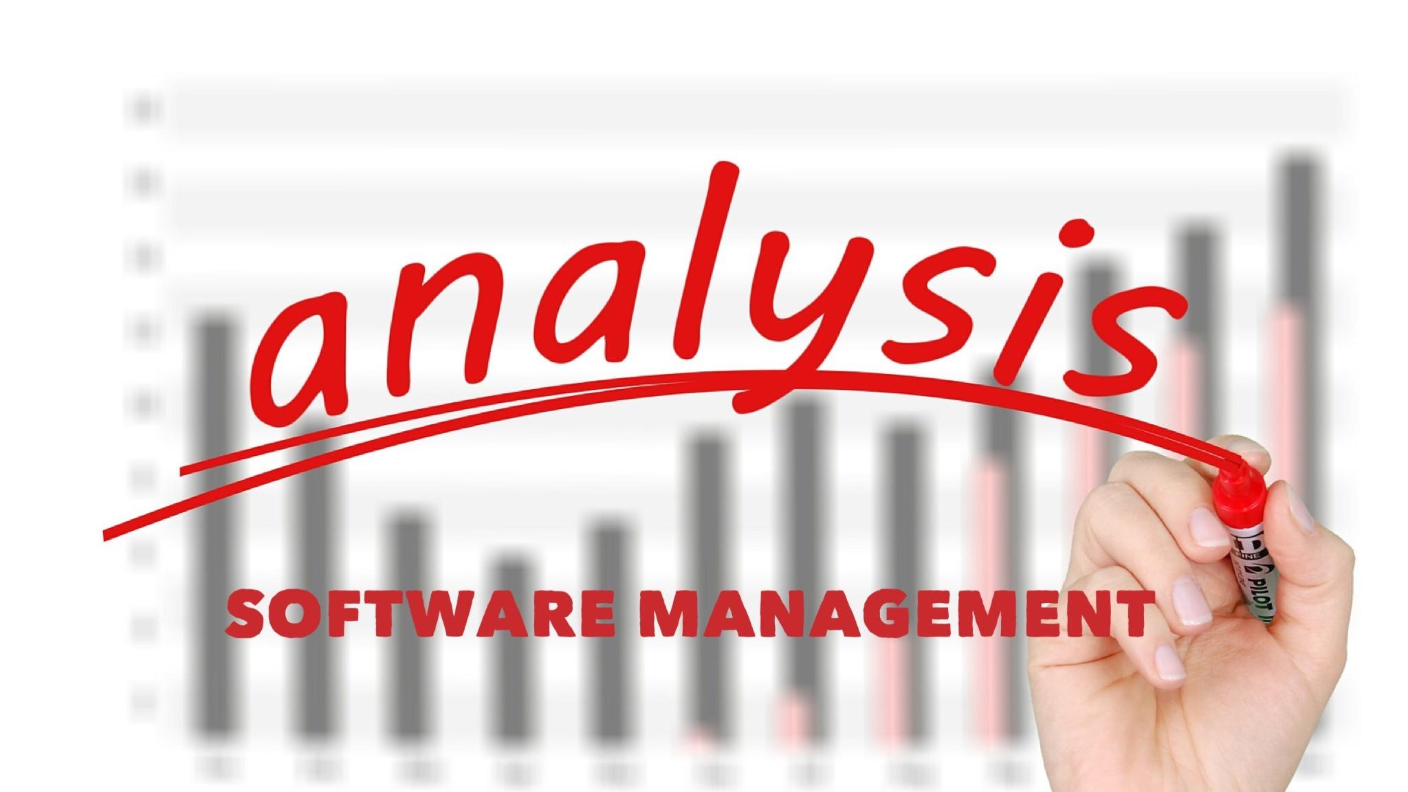 Software Mgt Analysis Typorama.jpg
